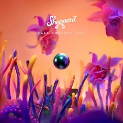 Come Back (Radio Edit) - Sheppard